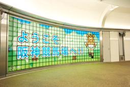 JRA 日本中央競馬会さま 阪神競馬場装飾企画03